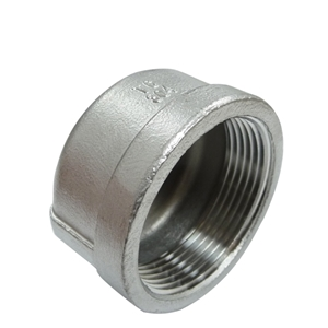 "Picture of SS CAP 1/4"" FIPT (PLUG)"