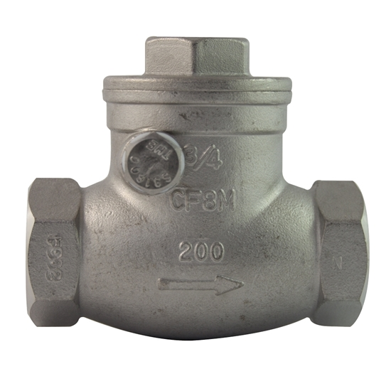 """Picture of SS CHECK VALVE 2"""""""