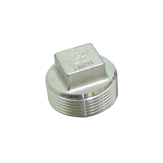"Picture of SS CAP 1/2"" MIPT"